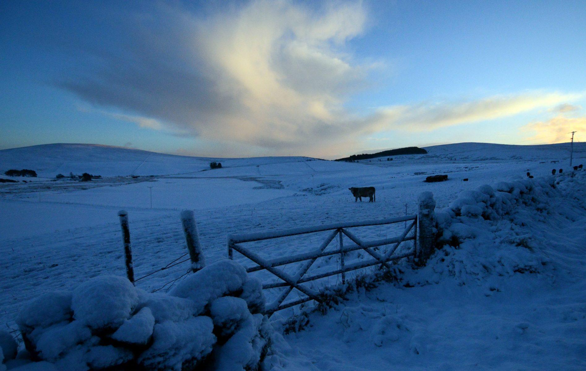 HEMEDIA_SNOWY_SCOTLAND13