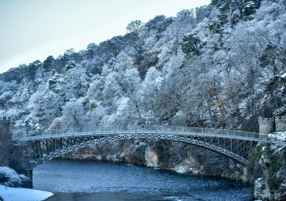 Spey frost